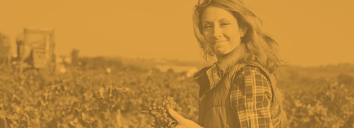 Agri-entrepreneur : un état d'esprit et des informations dédiées…